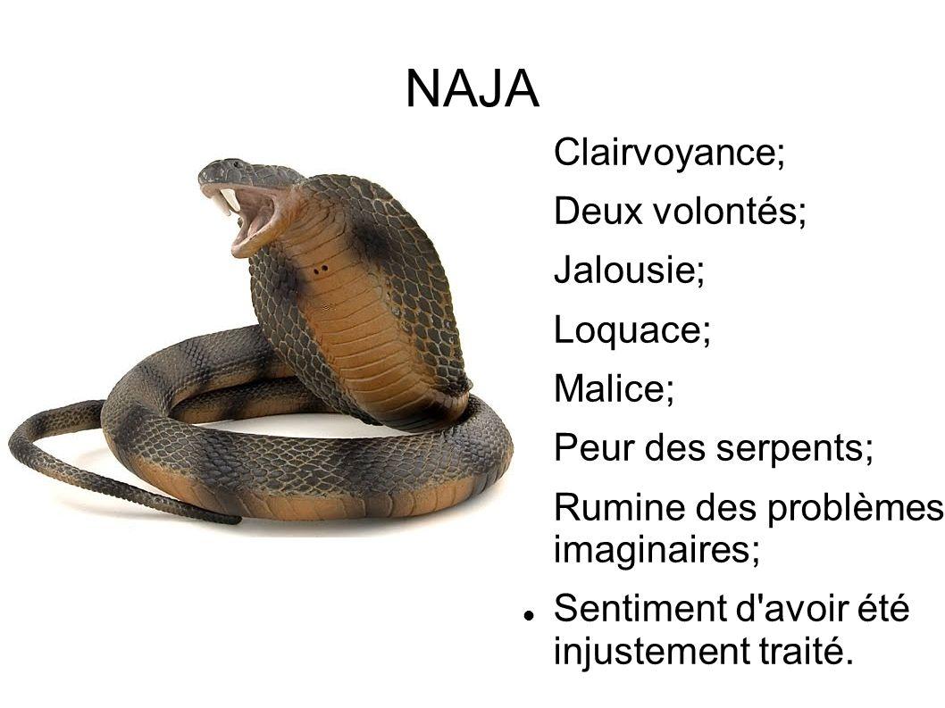 NAJA Clairvoyance; Deux volontés; Jalousie; Loquace; Malice;