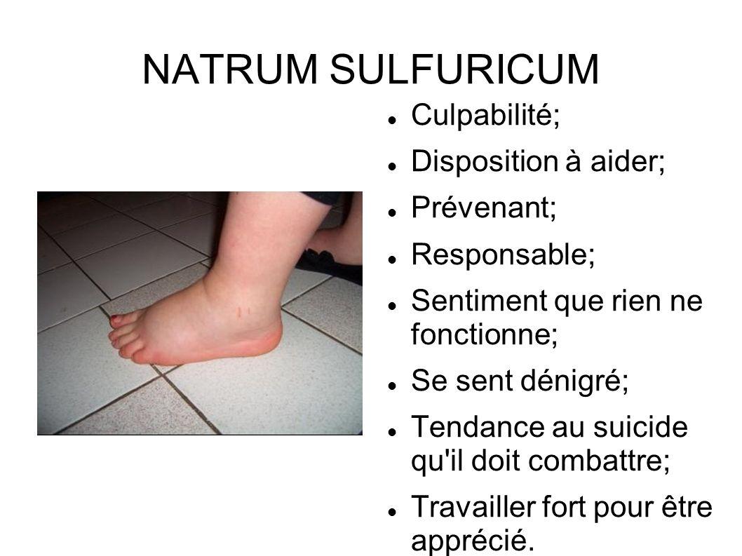 NATRUM SULFURICUM Culpabilité; Disposition à aider; Prévenant;