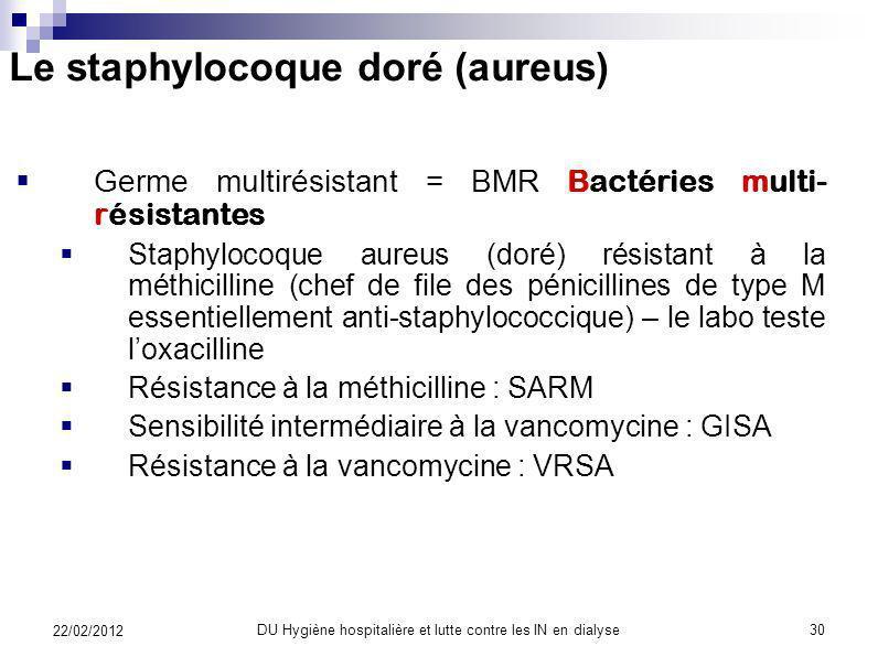 Le staphylocoque doré (aureus)