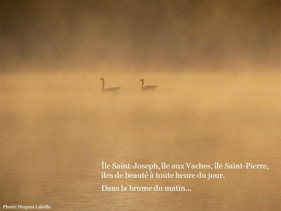 Île Saint-Joseph, île aux Vaches, île Saint-Pierre,
