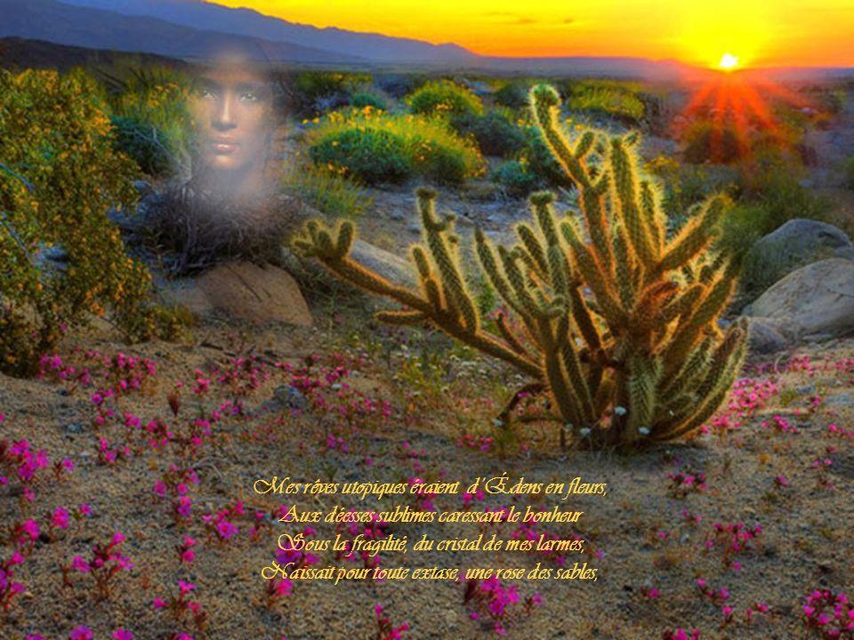 Mes rêves utopiques éraient d'Édens en fleurs,