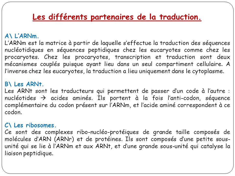 r gulation de l expression g n tique la traduction ppt