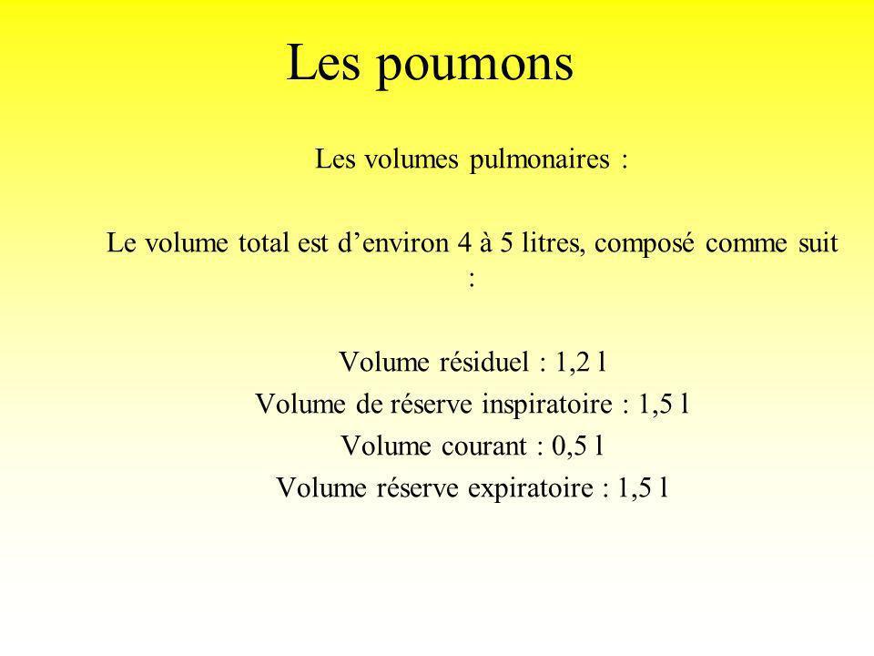 Les poumons Les volumes pulmonaires :