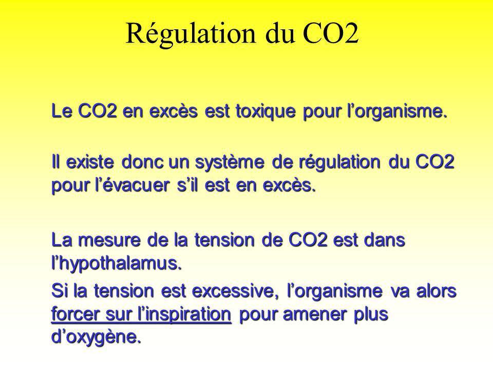 Régulation du CO2 Le CO2 en excès est toxique pour l'organisme.
