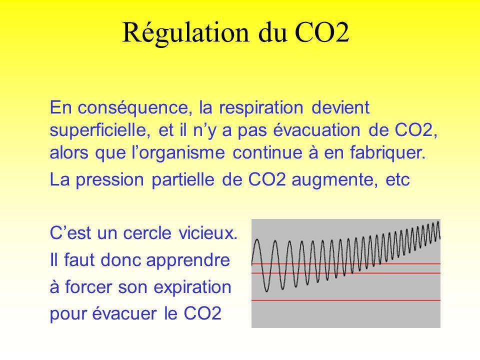 Régulation du CO2