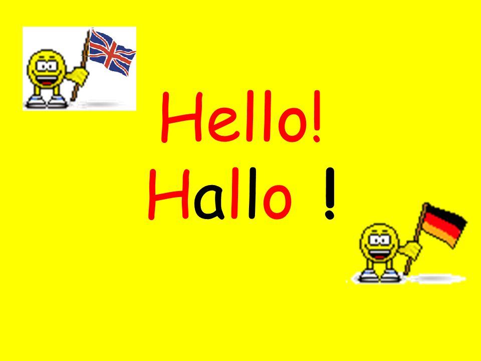 Hello! Hallo !