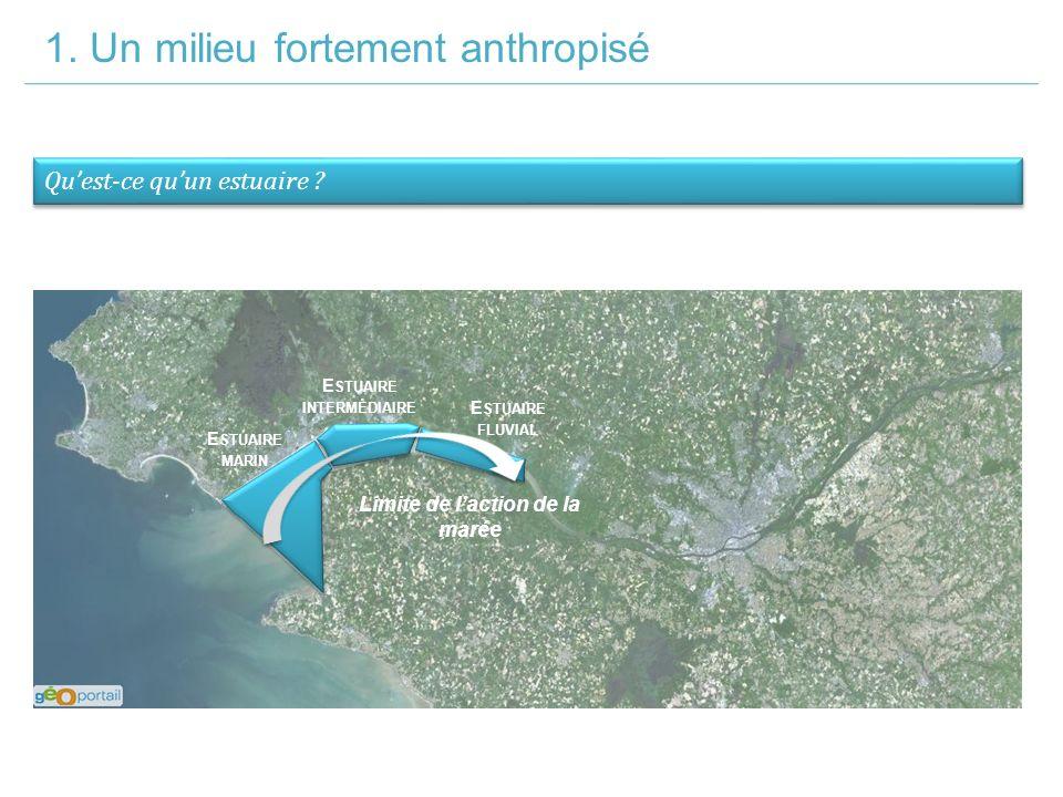 Estuaire intermédiaire Limite de l'action de la marée