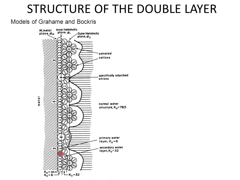 STRUCTURE OF THE DOUBLE LAYER