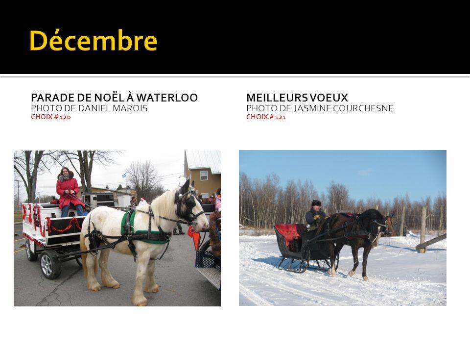 Décembre Parade de Noël à Waterloo Meilleurs voeux