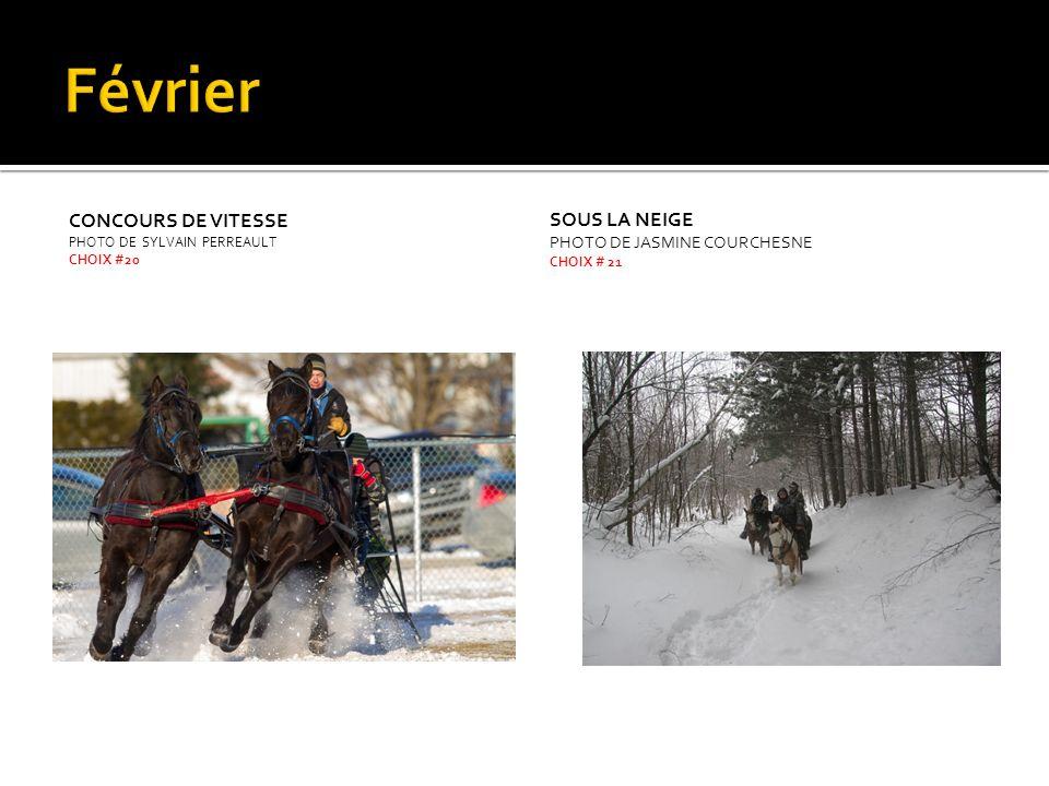 Février Concours de vitesse Sous la neige Photo de Jasmine Courchesne