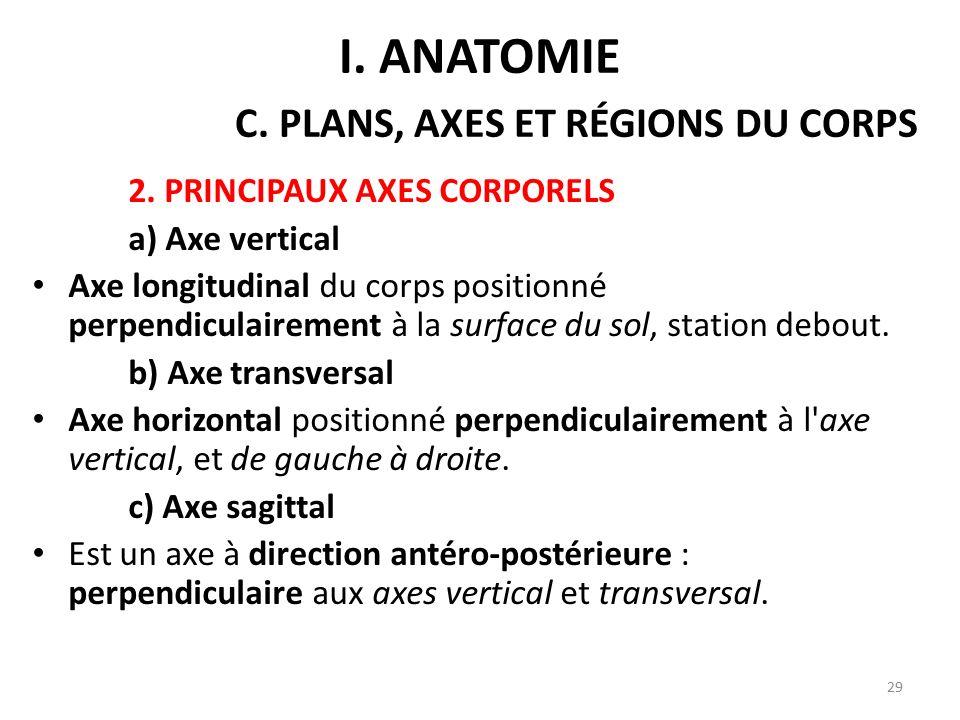 I. anatomie C. plans, axes et régions du corps