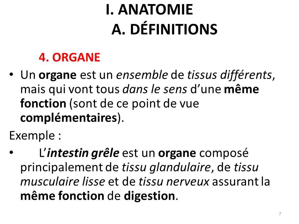 I. anatomie A. définitions