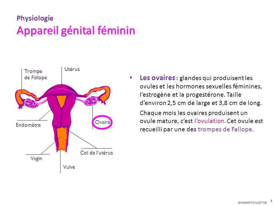 Physiologie Appareil génital féminin