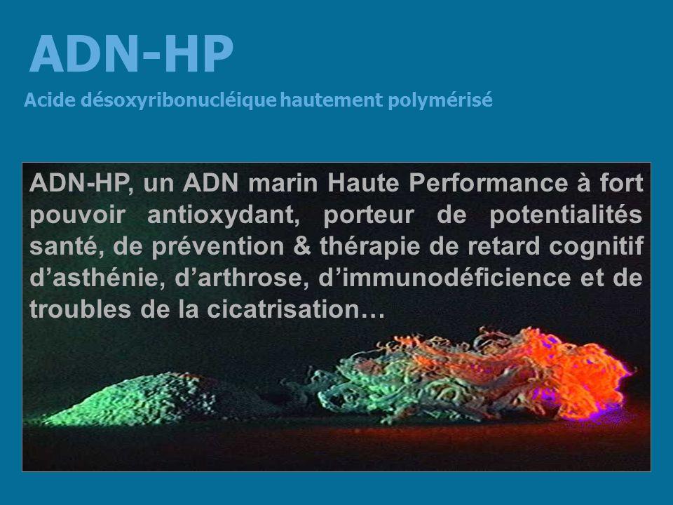 Acide désoxyribonucléique hautement polymérisé