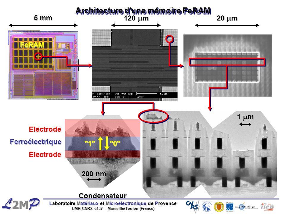 Architecture d une mémoire FeRAM
