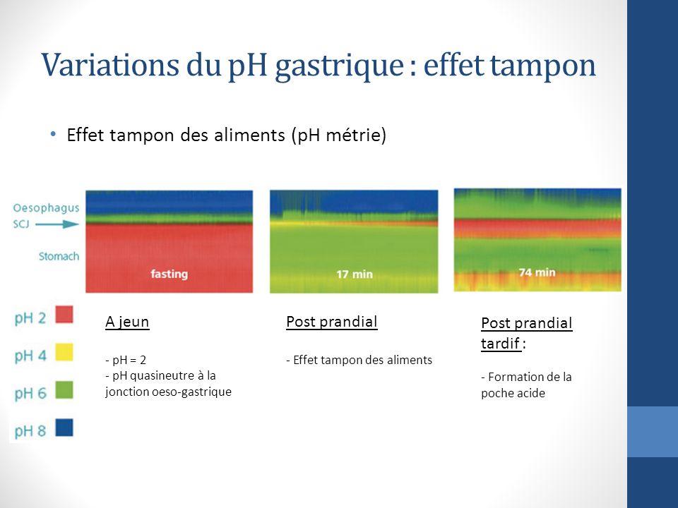 Super Sécrétion acide gastrique et sa régulation - ppt video online  BV96