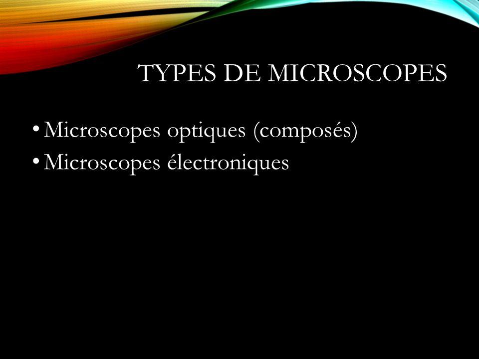 Types de microscopes Microscopes optiques (composés)
