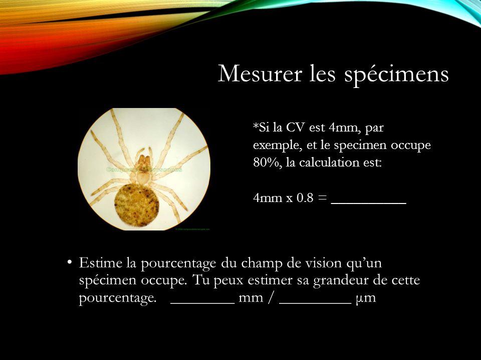 Mesurer les spécimens *Si la CV est 4mm, par exemple, et le specimen occupe 80%, la calculation est: