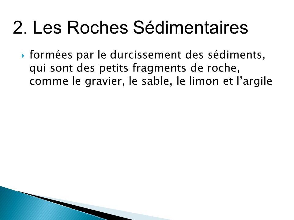 2. Les Roches Sédimentaires