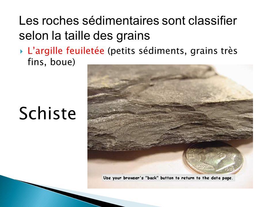 Les roches sédimentaires sont classifier selon la taille des grains