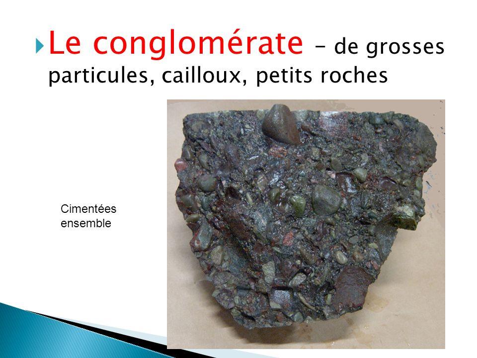 Le conglomérate – de grosses particules, cailloux, petits roches