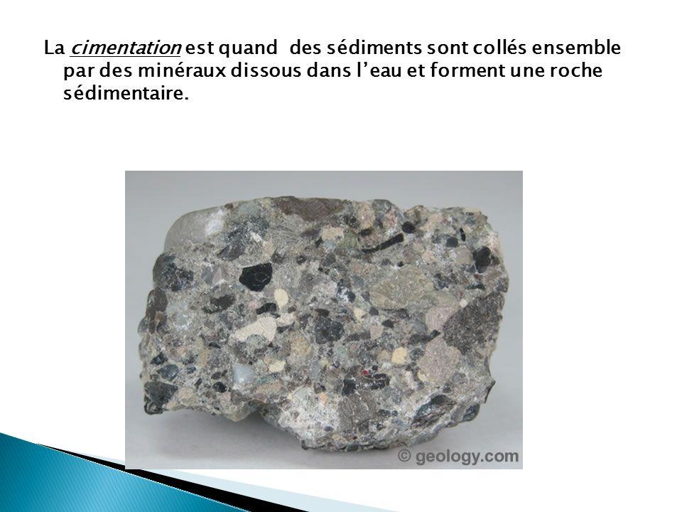 La cimentation est quand des sédiments sont collés ensemble par des minéraux dissous dans l'eau et forment une roche sédimentaire.