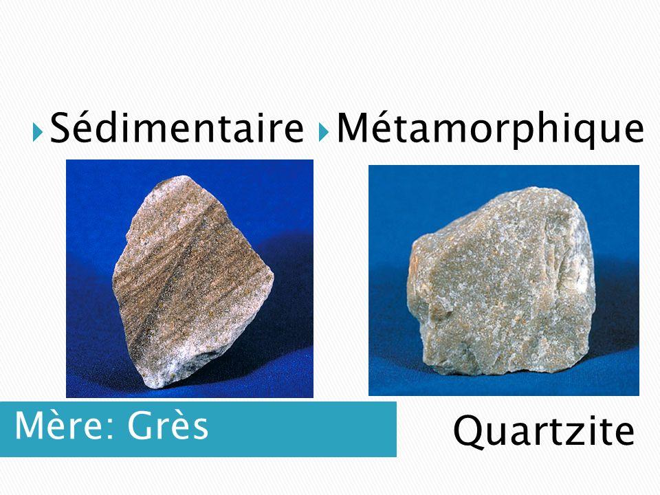 Sédimentaire Métamorphique Mère: Grès Quartzite