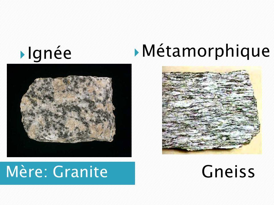 Métamorphique Ignée Mère: Granite Gneiss