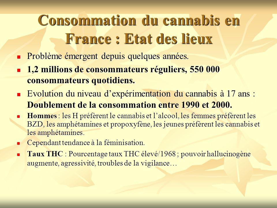 Consommation du cannabis en France : Etat des lieux