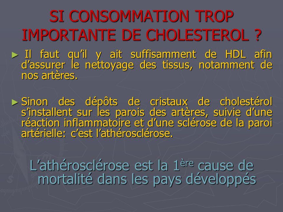 SI CONSOMMATION TROP IMPORTANTE DE CHOLESTEROL