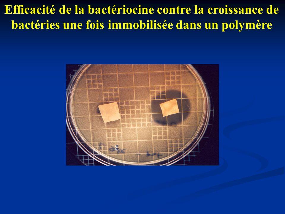 Efficacité de la bactériocine contre la croissance de bactéries une fois immobilisée dans un polymère