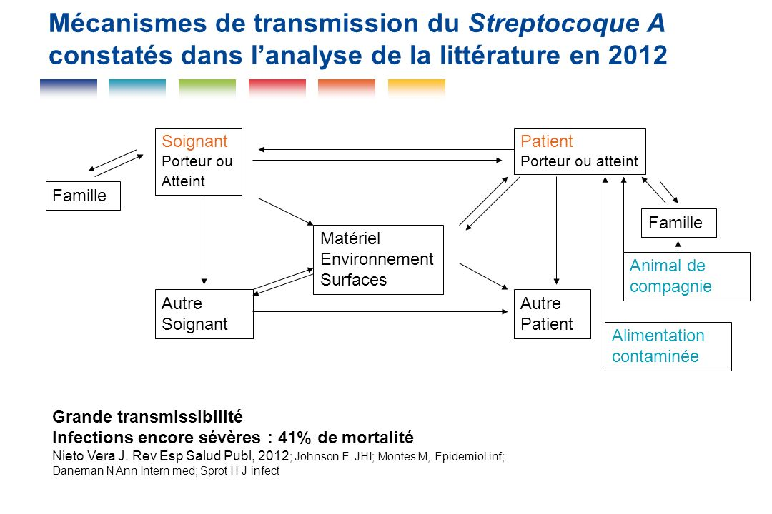 Mécanismes de transmission du Streptocoque A constatés dans l'analyse de la littérature en 2012