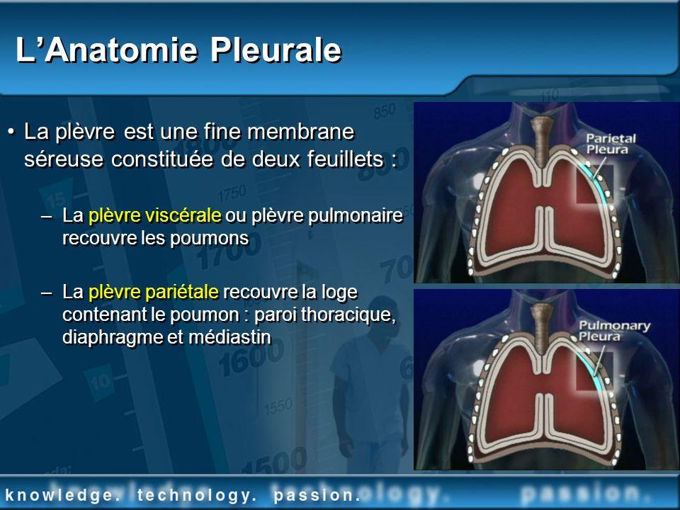 L'Anatomie Pleurale La plèvre est une fine membrane séreuse constituée de deux feuillets :