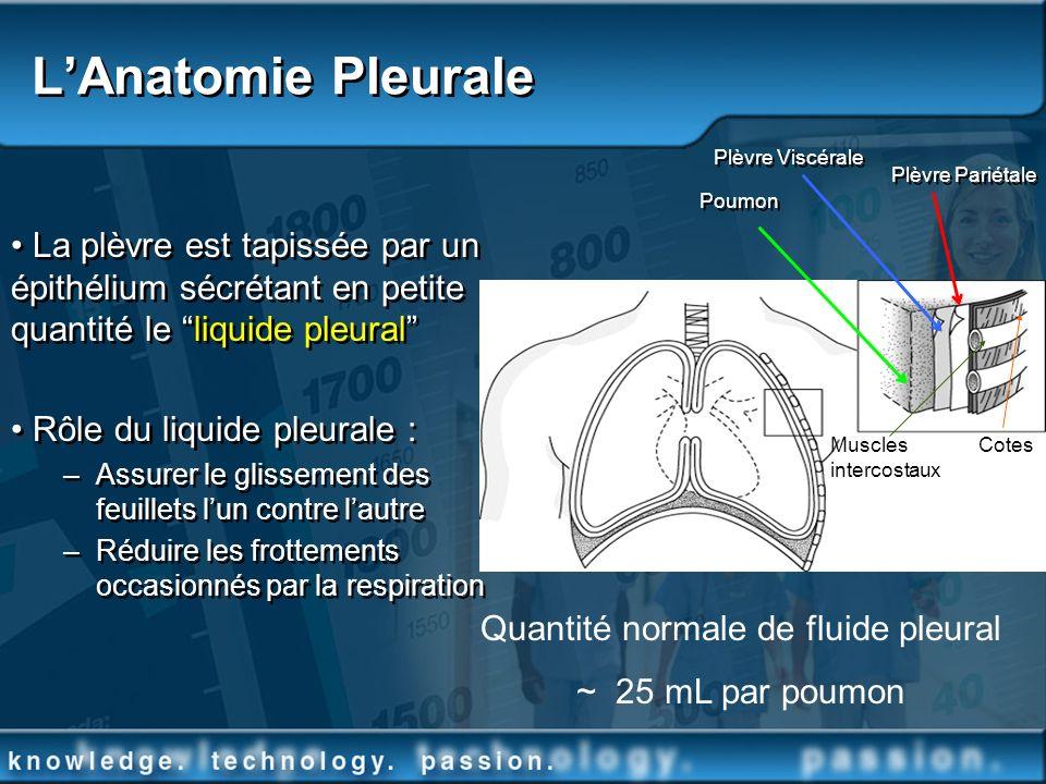 Quantité normale de fluide pleural