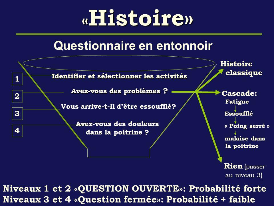 «Histoire» Questionnaire en entonnoir