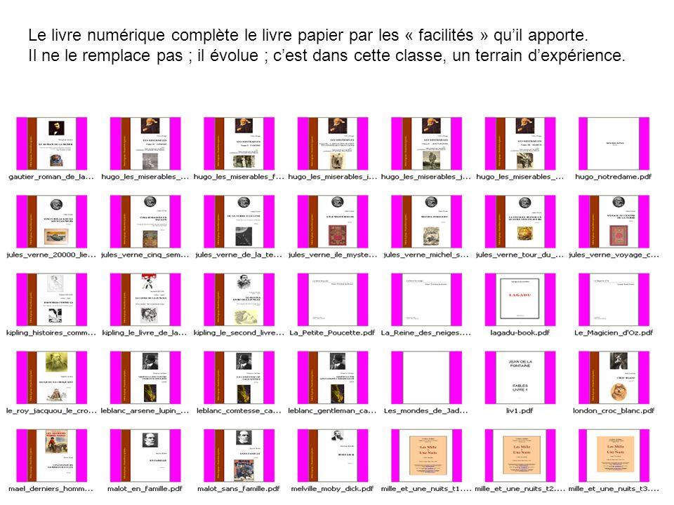 Le livre numérique complète le livre papier par les « facilités » qu'il apporte.
