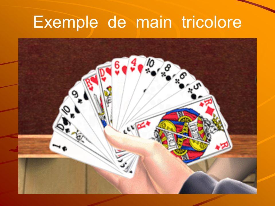 Exemple de main tricolore