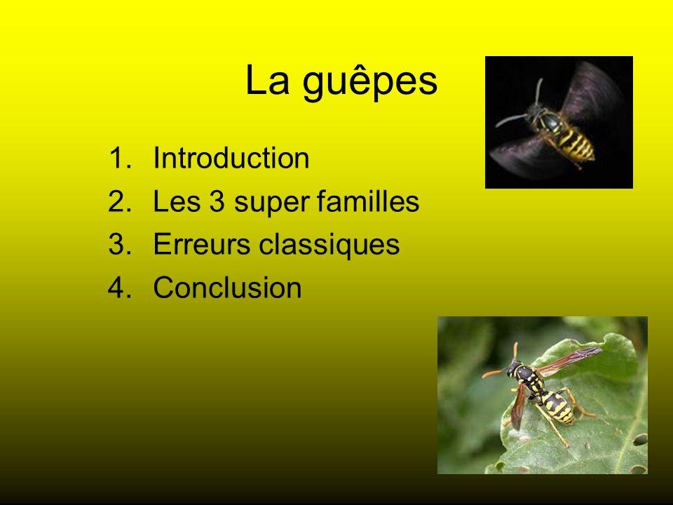 Introduction Les 3 super familles Erreurs classiques Conclusion