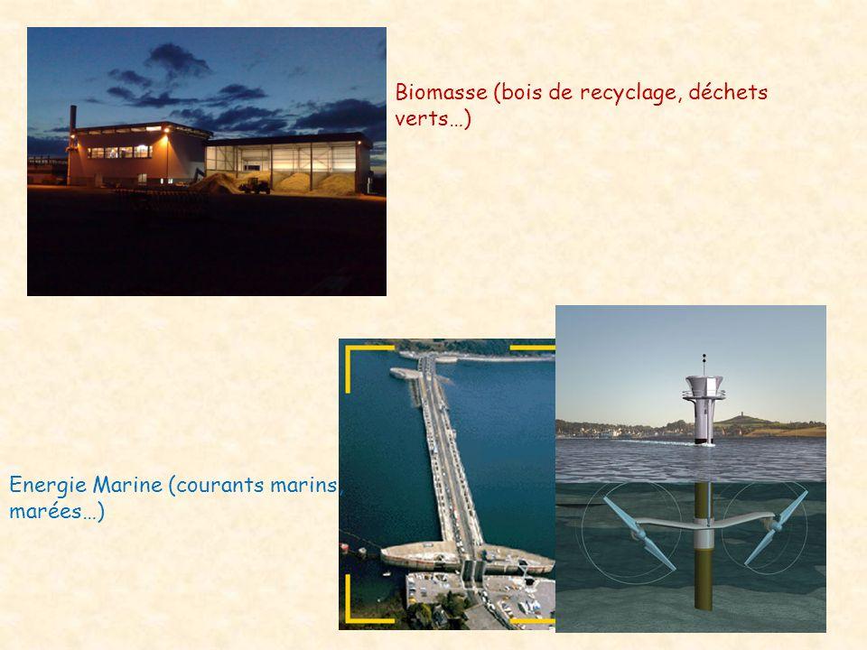 Biomasse (bois de recyclage, déchets verts…)