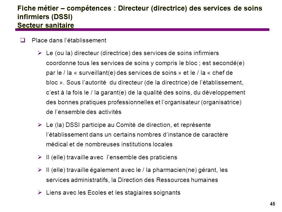 Fiche métier – compétences : Directeur (directrice) des services de soins infirmiers (DSSI) Secteur sanitaire