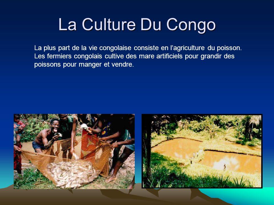 La Culture Du Congo