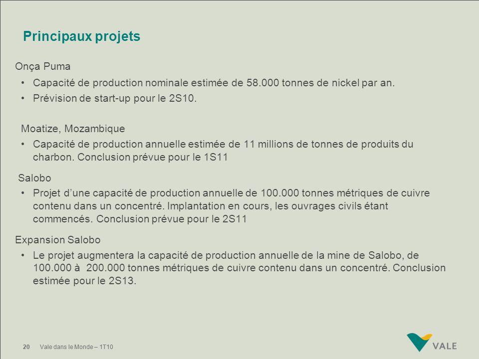 Principaux projets Onça Puma