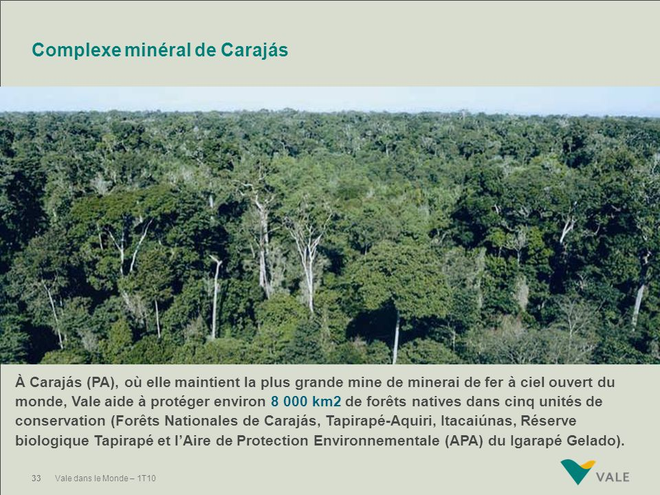 Complexe minéral de Carajás