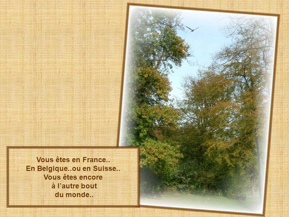 En Belgique..ou en Suisse..