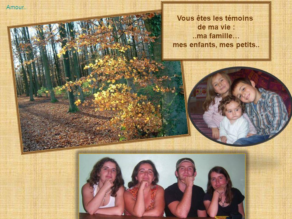 Vous êtes les témoins de ma vie : ..ma famille…