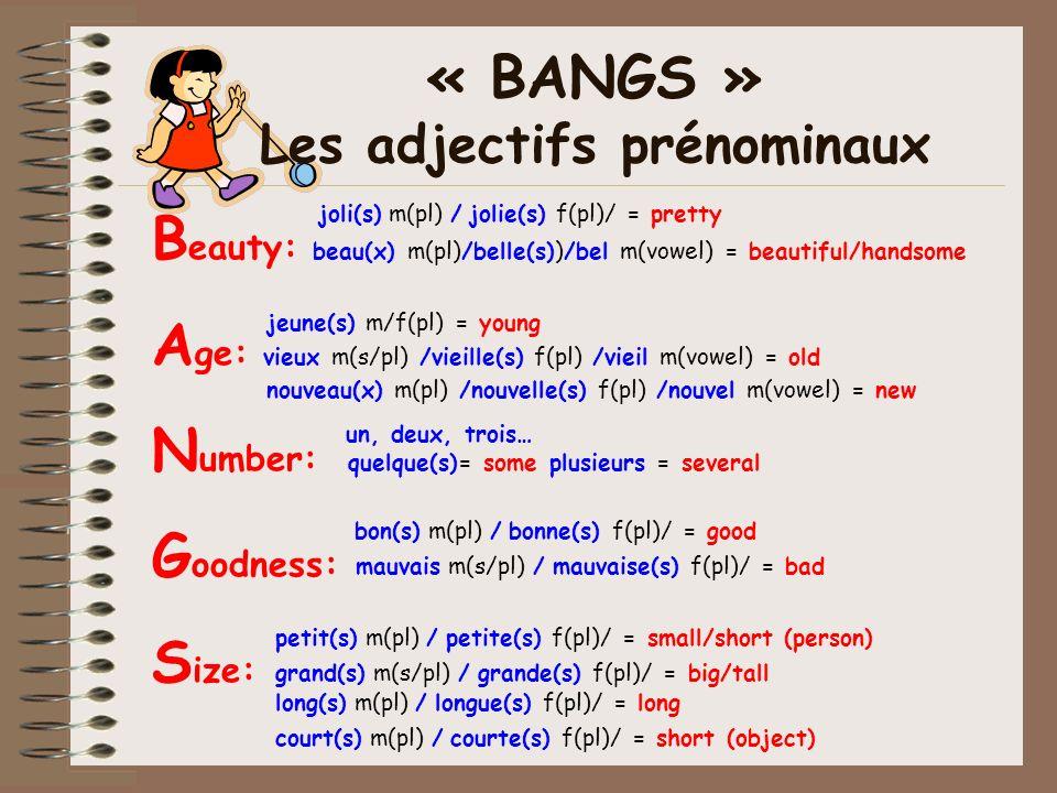 « BANGS » Les adjectifs prénominaux