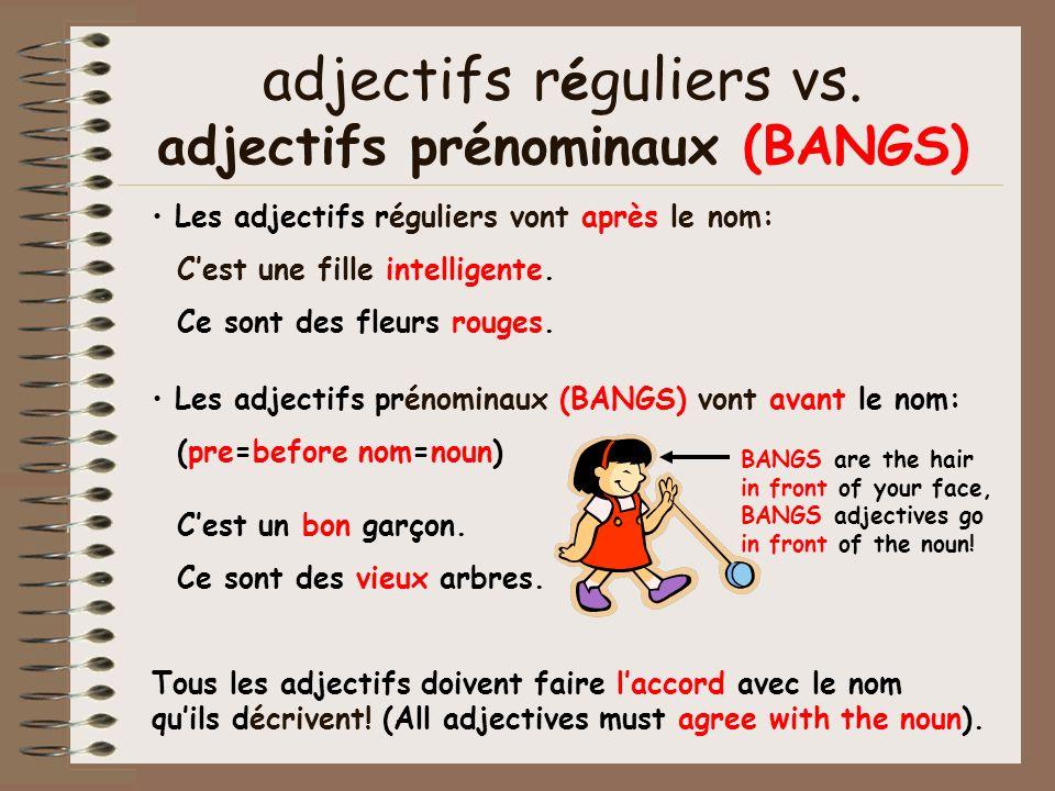 adjectifs réguliers vs. adjectifs prénominaux (BANGS)