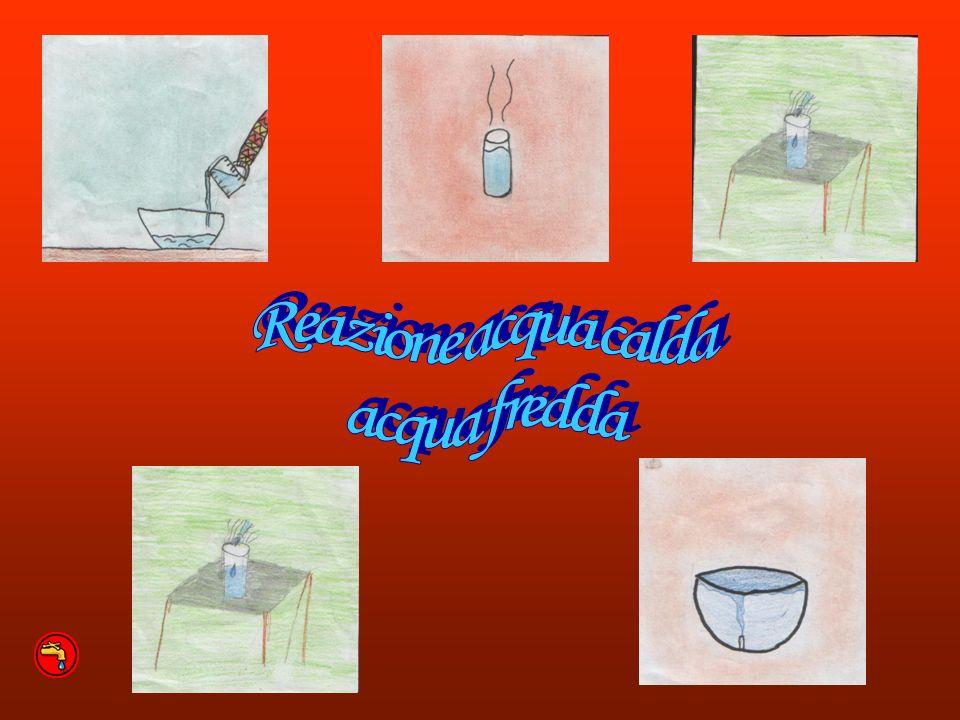 Reazione acqua calda acqua fredda