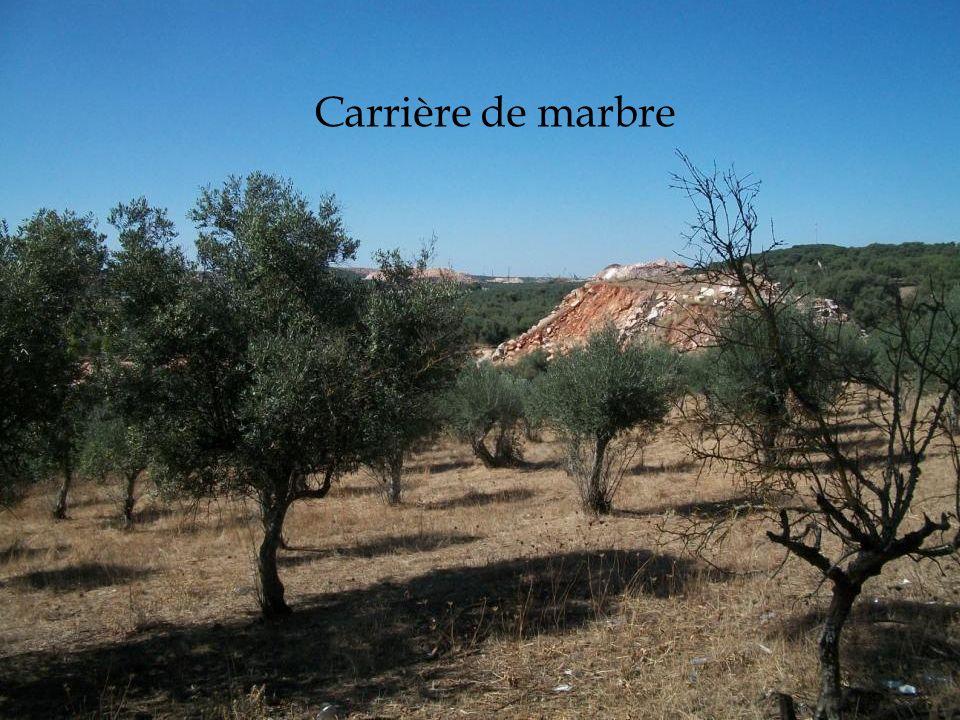Carrière de marbre 02/12/2011