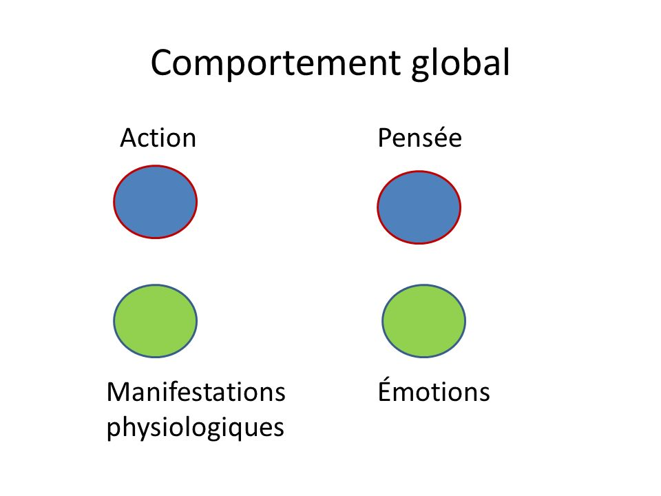 Comportement global Action Pensée Manifestations Émotions physiologiques
